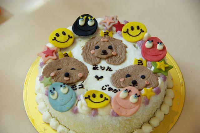 2009.7.30まりん寿花誕生会 455
