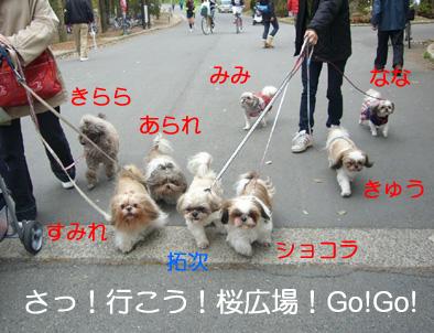 090404_02_oizumi.jpg