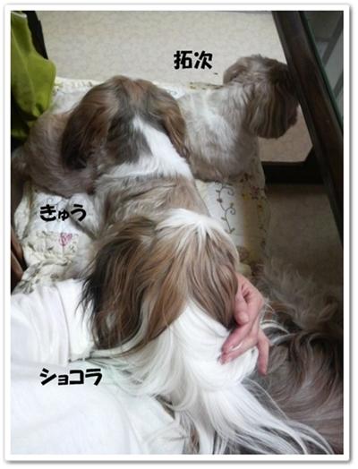 090506_taku_bros_05.jpg