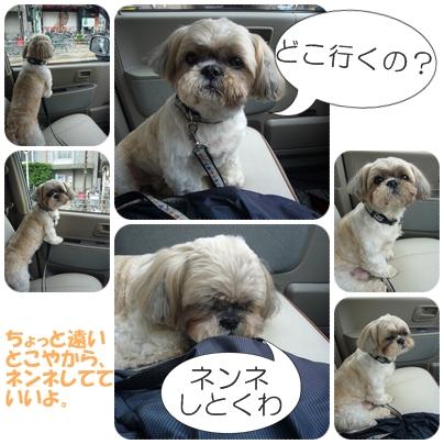 090507_takutaku_01.jpg