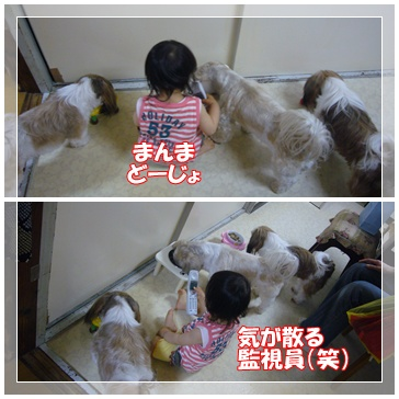 090610_mico_02.jpg