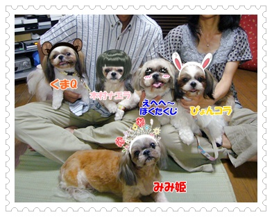 090618_kaso.jpg