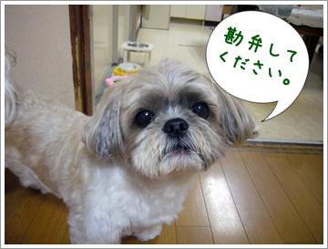 090627_taku_01.jpg