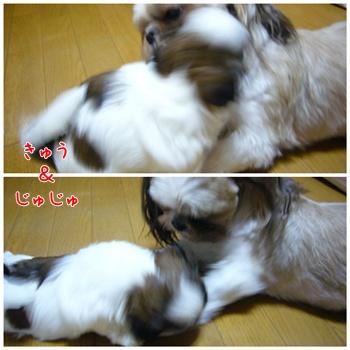 090627_taku_03.jpg