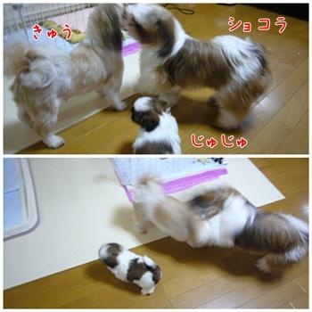 090627_taku_04.jpg