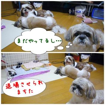 090627_taku_05.jpg