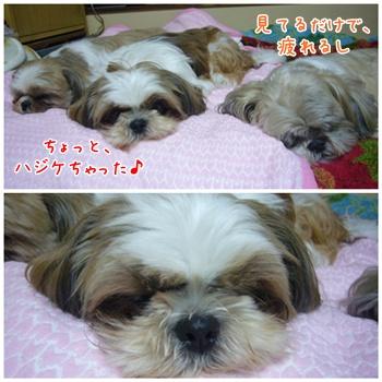 090627_taku_06.jpg