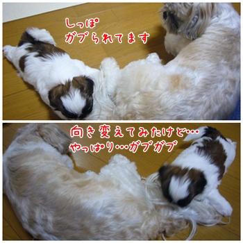 090627_taku_07.jpg