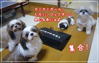 090711_tqcjp_05.jpg