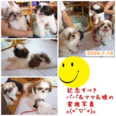 090718_shachan_05.jpg