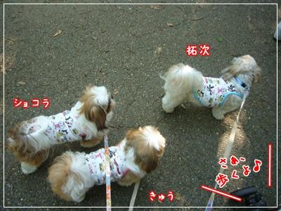 090815_oizumi_02.jpg