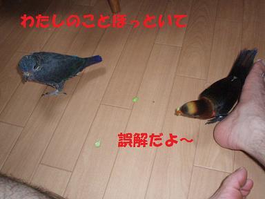 20090729ぴんな5