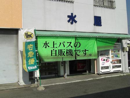 黒鯛2-1