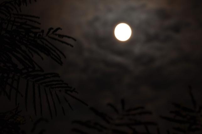 満月(3)
