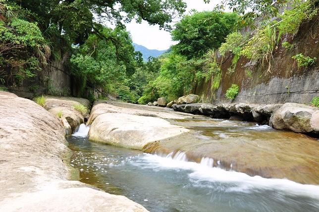 外雙溪のカワトンボ(1)