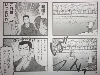 氷室の天地 Fate/school life 2012年2月号 (4)
