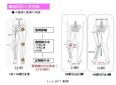 膝関節の運動軸