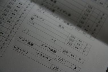 090809-6.jpg