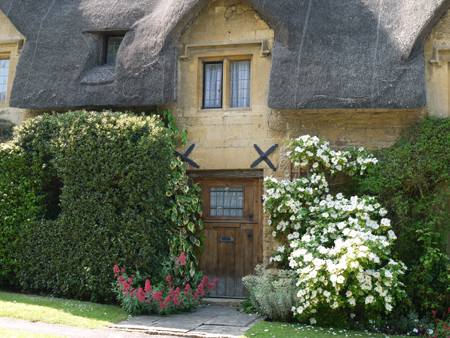 a thatched roof house3