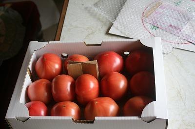 箱入りトマト