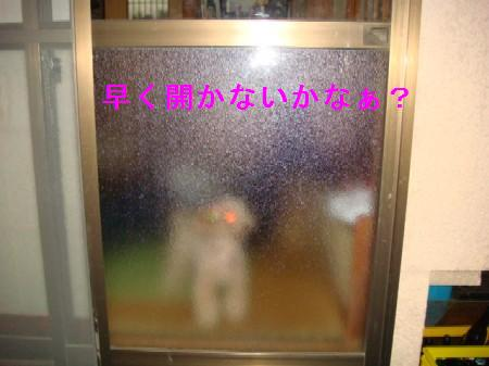 BQ11.jpg