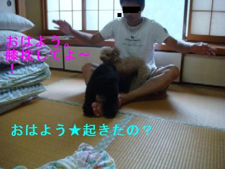 BQ15.jpg