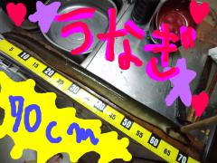 CA3F0409-2.jpg