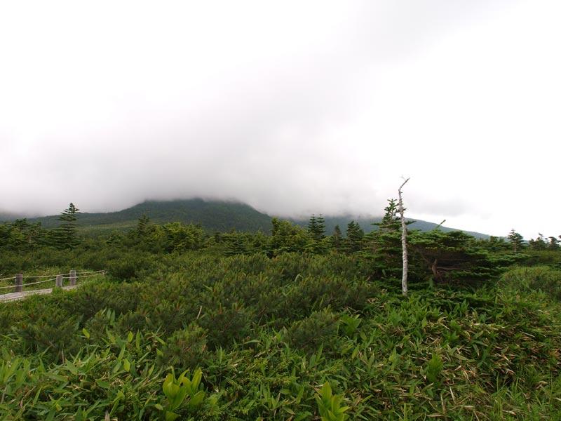 田の原より頂上