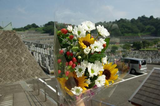 110815-01flower.jpg