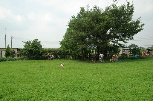 110814-15hirukawa view