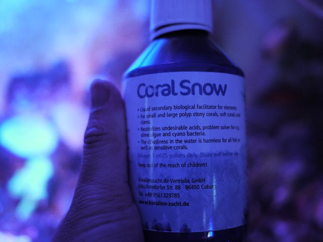 KZ coral snow