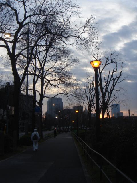 皇居散歩 119