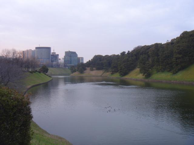 皇居散歩 158