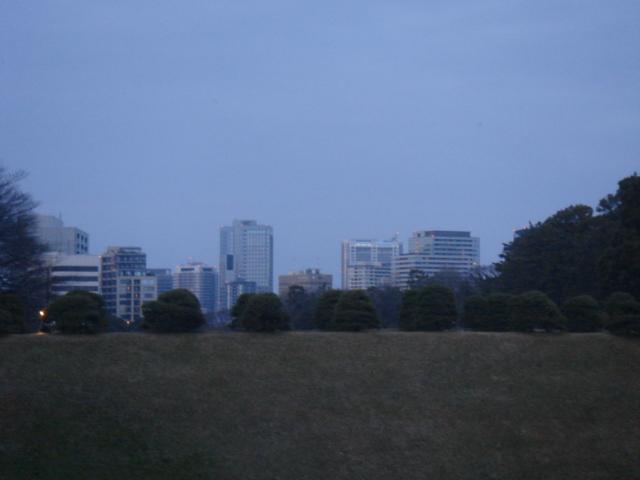 皇居散歩 197