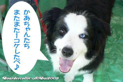 2009-06-06-01.jpg