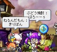 Maple120412_201103.jpg