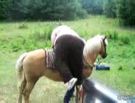 《動物虐待》太ったおばさんは馬に乗れません