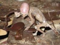 メキシコのエイリアンの赤ちゃんミイラ&電柱の影から出てくる宇宙人.