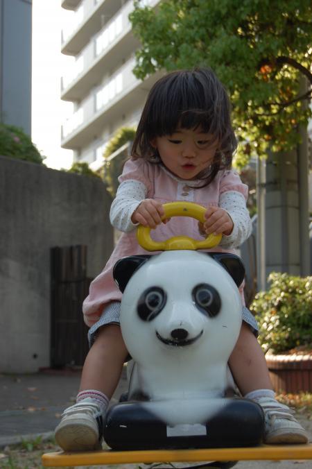 パンダに乗ってます