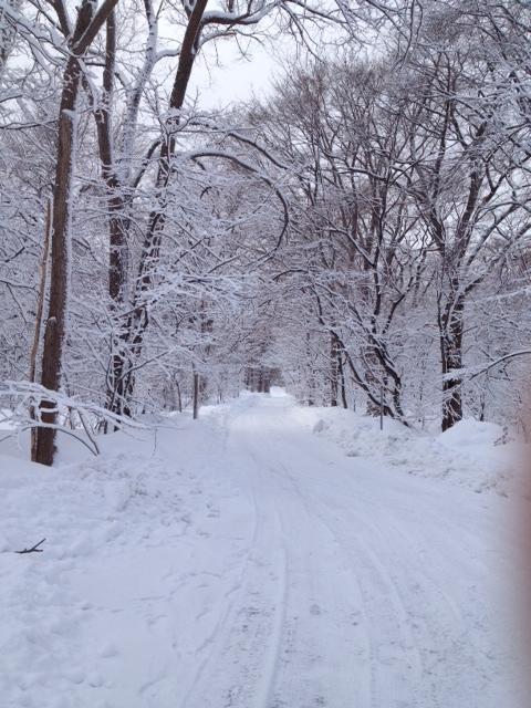北大雪景色