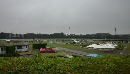 『らーめん屋台祭』@中山競馬場 会場の眺望