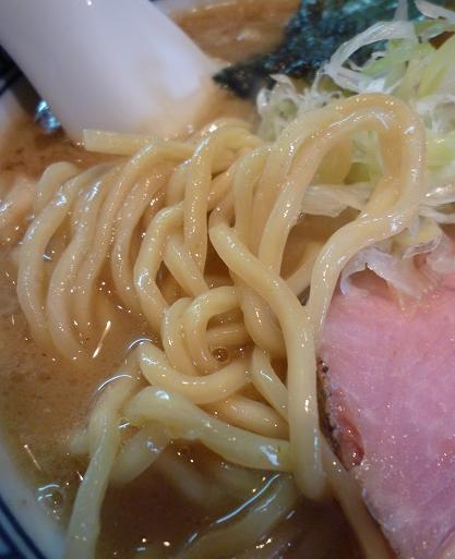 『ほん田』 味玉濃厚魚介らーめん(麺アップ)