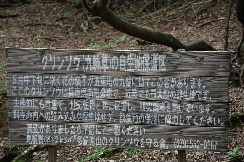篠山 三岳より、1