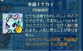maple_111214_223420.jpg