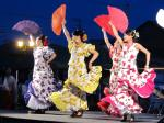 20110808_flamenco.jpg