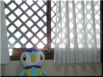 部屋から見ると・・・