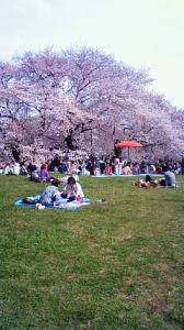 kinuta park tokyo 200904