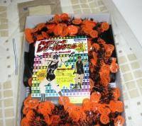 halloween hg costume box