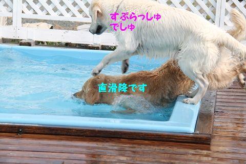 20110723_03_R.jpg