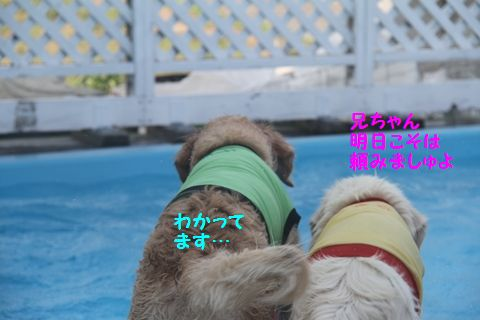 20110723_09_R.jpg